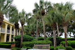 Courtyard surrounded by tropical trees,Beachview Club Hotel,Jekyll Island,2015 Royalty Free Stock Photos