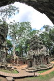 Courtyard of Ta Prohm temple in Cambodia Royalty Free Stock Images