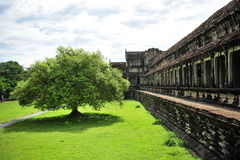 Courtyard and wall of Angkor Wat Temple Royalty Free Stock Images