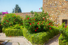 Courtyards and gardens of the famous Palace of the Alcazaba in M Royalty Free Stock Photography