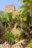 Courtyards and gardens of the famous Palace of the Alcazaba in M Stock Images