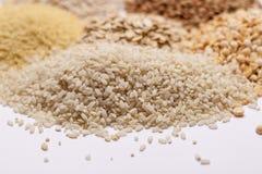 Couscous, rice, pea, grits, oatmeal, lentil. Stock Images