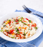 Couscous salad. Peppers,tomatoes spring onion for the garnish Royalty Free Stock Image