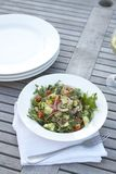 Couscous salad on outdoor table. Couscous salad. Natural light, outdoor table setting Royalty Free Stock Image