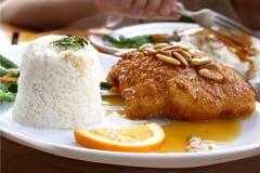 Cousine japonês - peixe fryed com arroz imagens de stock