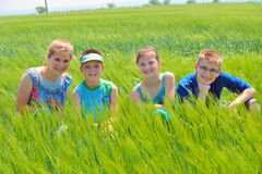 Cousins in wheat field Royalty Free Stock Photography