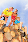 Cousins on wood. Teenagers together on wood pale Royalty Free Stock Photo