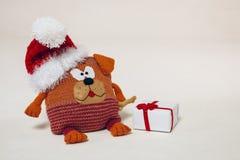 Coussin tricoté de chien sur le fond blanc photos stock