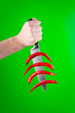 Couteau avec les poivrons rouges Photos libres de droits