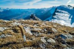 Couteau dans la montagne Photographie stock