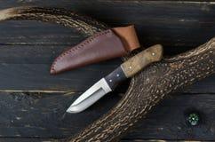 Couteau de chasse avec la gaine brune en cuir Image libre de droits