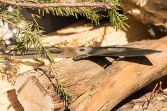 Couteau se reposant sur des rondins Image stock