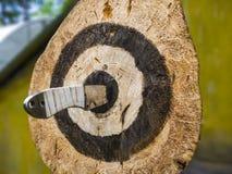 Couteaux de lancement en plein air photo stock