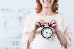Coutil d'horloge biologique images libres de droits