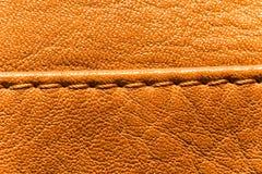 Couture sur le plan rapproché brun de peau de veau Image libre de droits