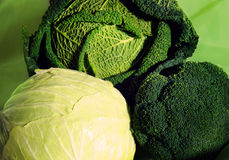 Couve branca ao lado do couve-de-milão e dos brócolis, três espécies diferentes em um lugar Imagem de Stock Royalty Free