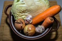 Couve, cenoura, cebola e alho no fundo do potenciômetro e da bandeja imagem de stock royalty free