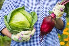 Couve e beterraba fêmeas de Hold Fresh Green do fazendeiro Foto de Stock Royalty Free