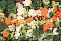 Couve-flor, brócolis, cenoura e aipo Imagem de Stock