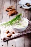 Couve-flor, pastinaga, batata, sopa do aipo Fotografia de Stock