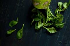 A couve fresca da couve-rábano encontra-se na tabela Imagens de Stock Royalty Free
