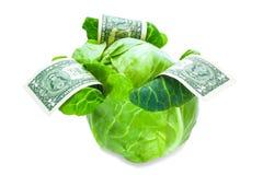 Couve monetária Imagem de Stock Royalty Free