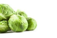 Couve verde fresca de Bruxelas Imagens de Stock Royalty Free