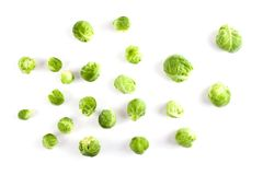 Couve verde fresca de Bruxelas Imagem de Stock