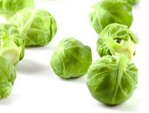 Couve verde fresca de Bruxelas Fotografia de Stock Royalty Free