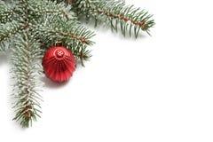 Couvert de branche de neige d'un arbre de Noël et d'une boule rouge Photos stock