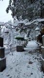 Couvert de neige de bel Pakistan hiver de déplacement hypnotisant de destination de beauté de l'Asie Images libres de droits