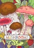 Couverture comestible de champignon illustration de vecteur