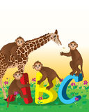Couverture d'ABC d'amour de singe de girafe Photographie stock libre de droits