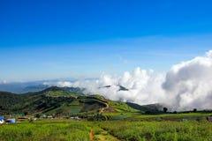 Couverture de montagne par le brouillard Image stock