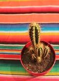 Couverture mexicaine de poncho de fiesta avec le cactus Photo stock