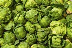 Couves de Bruxelas Imagem de Stock