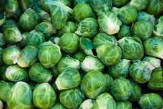 Couves de Bruxelas orgânicas Fotografia de Stock