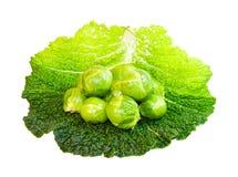 Couves de Bruxelas - vegetais saudáveis sobre o branco fotografia de stock