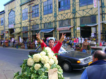 Couves do vendedor do mercado de rua Fotografia de Stock