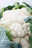 Couves-flor frescas cruas Imagens de Stock Royalty Free