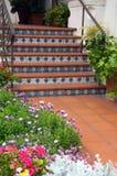 Entrée carrelée d'escalier Photo stock