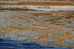 Couvre-tapis bactérien de Yellowstone hors de l'eau Images libres de droits