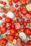 Couvrez la casserole de tomates, d'ail et d'herbes rôtis Image stock