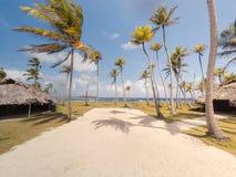 Couvrez les huttes/pavillons de chaume sur la petite île tropicale avec des palmiers images libres de droits