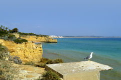 Cova Redonda Beach, Armacao De Pera, Algarve Stock Photos