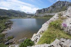 covadonga Arkivfoton