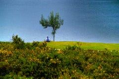 Covadonga fotografia de stock royalty free