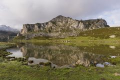 covadonga lakes arkivfoton