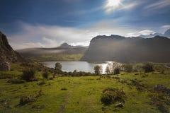 covadonga lakes royaltyfri foto