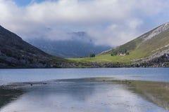 covadonga lakes fotografering för bildbyråer